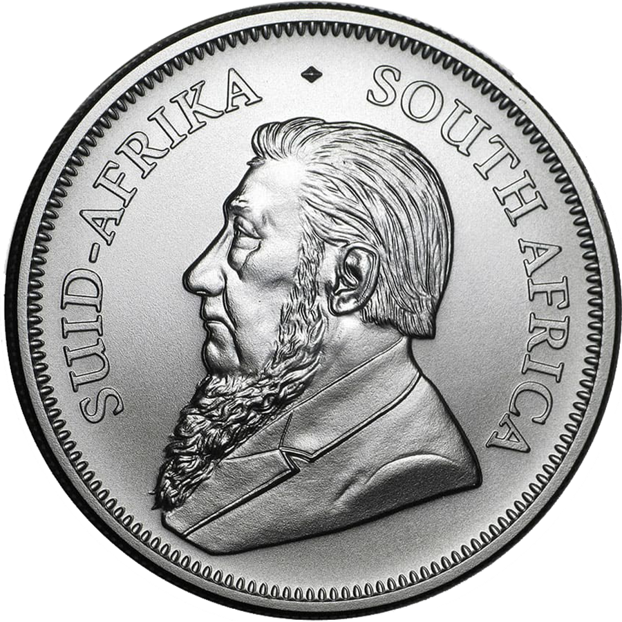 2020 South African Krugerrand 1oz Silver Coin - Full Tube of 25 Coins (Image 3)