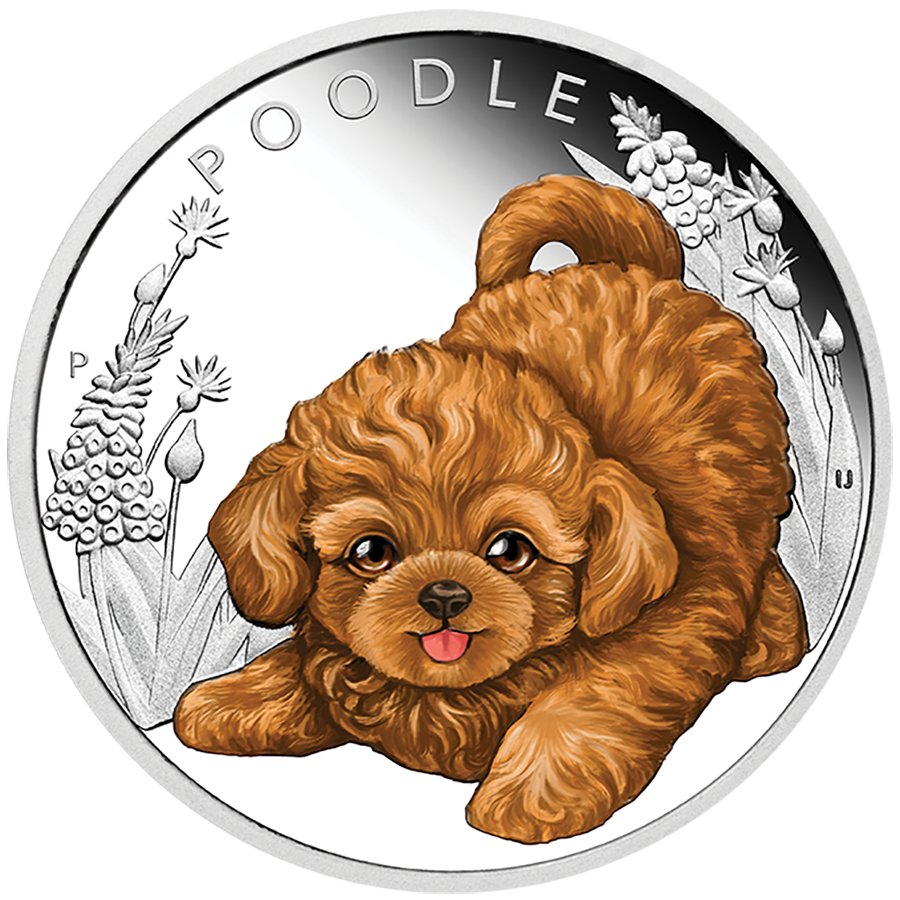 2018 Australian Puppies Series: The Poodle 1/2oz Silver Proof Coin